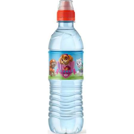 Paw Patrol Water Bottle Labels, Paw Patrol Labels girls and boy, stickers , Bottle Labels, Bottle Stickers, Labels, Paw Patrol, Ryder thumb