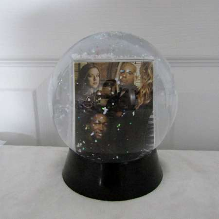 Veronica Mars Snow Globe DIY TV Show (Season 3) 6 thumb