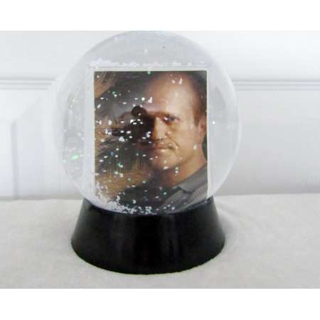 Veronica Mars Snow Globe DIY TV Show (Season 3) 11 thumb