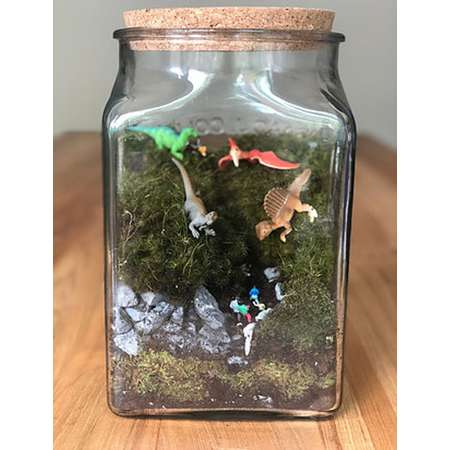 Large moss terrarium - Dinosaurs - story - fun - miniature - live moss - Jurassic park thumb