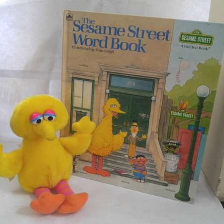Sesame Street Word Book Hardcover – September 15, 1983 by Golden Books (Author) W plush Big Bird thumb
